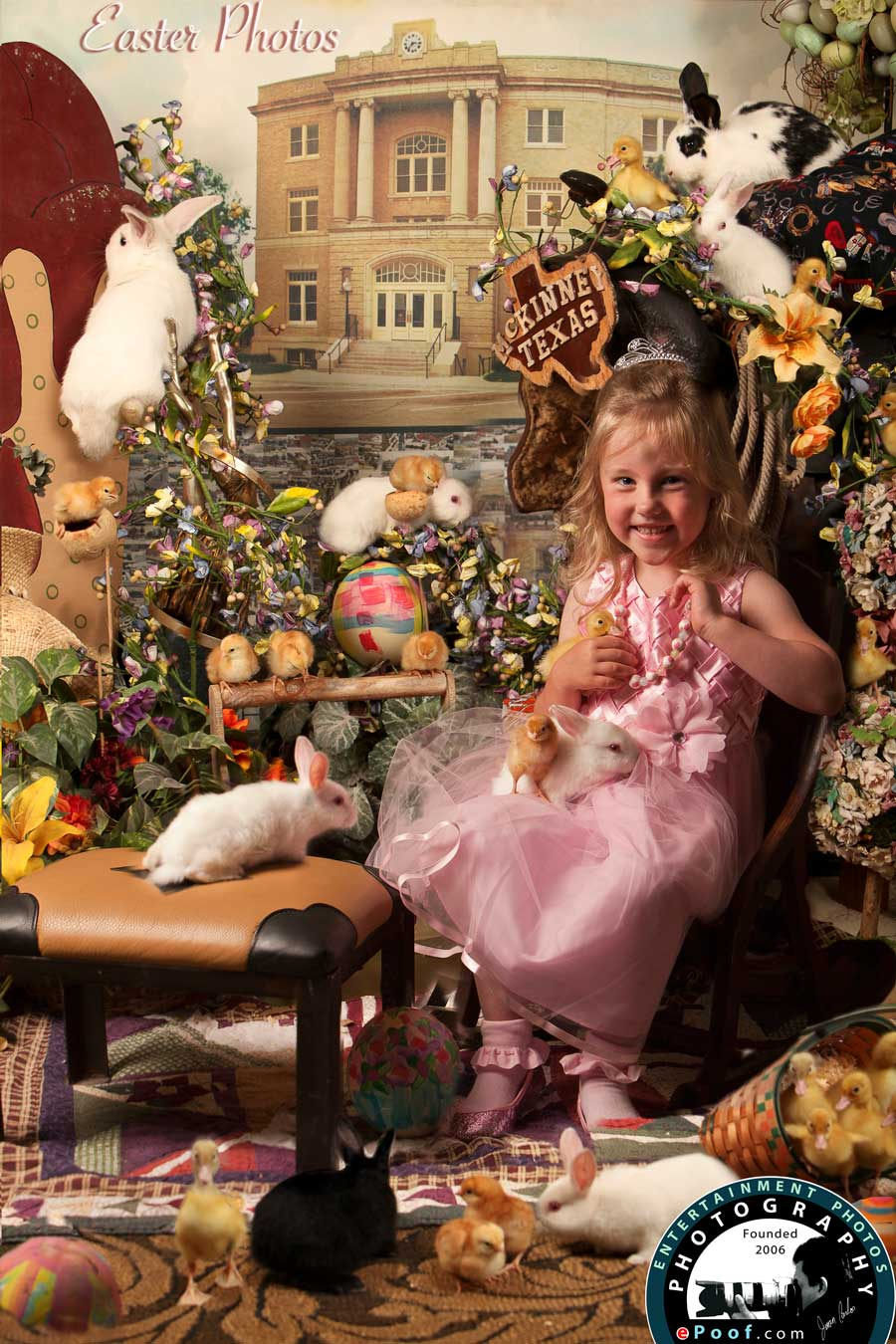Easter Bunny Photos by juan carlos 2015